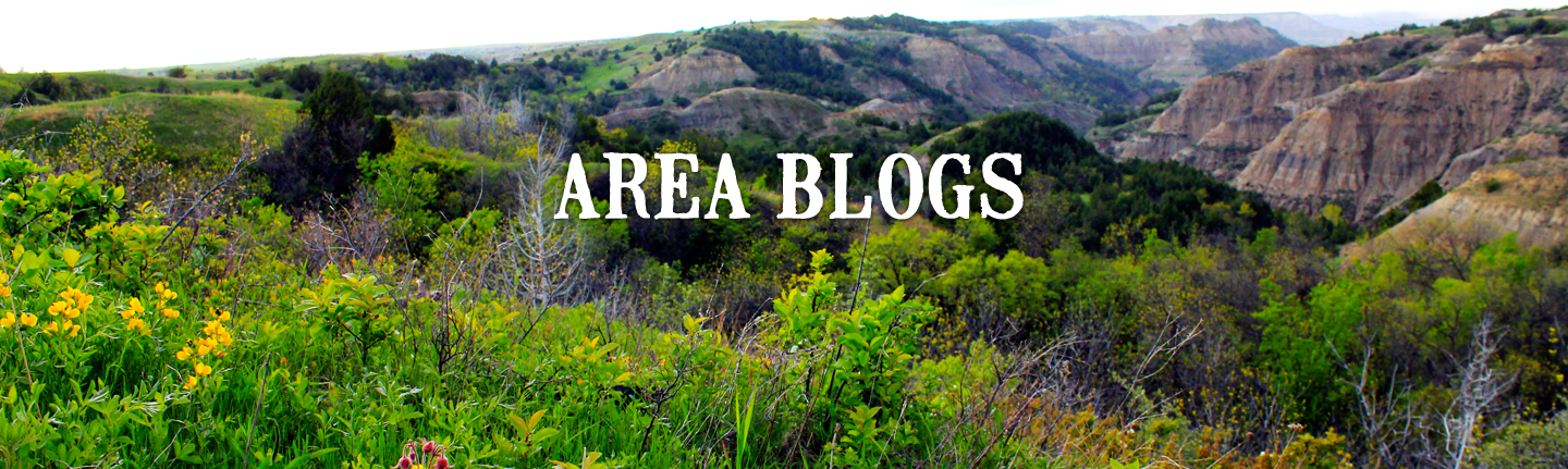 Area Blogs